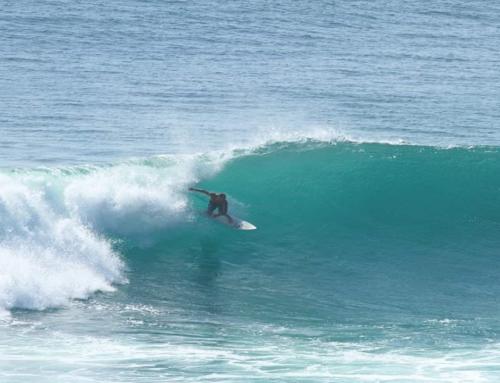 Próxima apertura Escuela de surf y Paddle surf